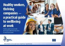Healthy workers, thriving companies - a practical guide to wellbeing at work